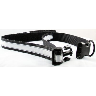 Petflect Co-Leash All-in-One Collar and Night Lite Leash
