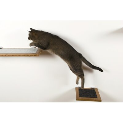 Square Cat Habitat Itch Step Wall Perch