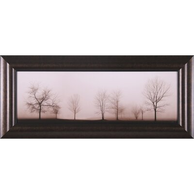 "Art Effects Misty Meadow Wall Art - 19"" x 43"""