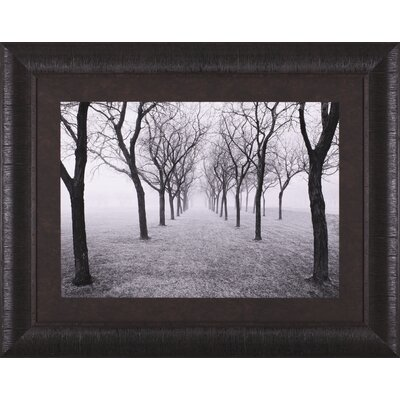 Art Effects Tunnel of Trees Framed Artwork
