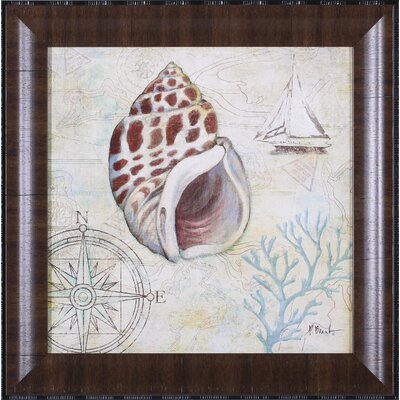 Discovery Shell IV Wall Art