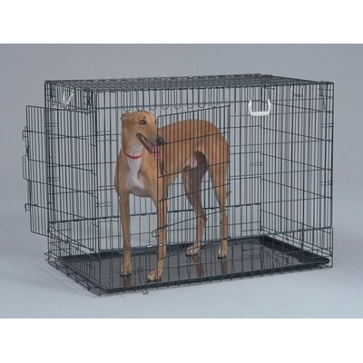 Two Door Black Wire Dog Crate