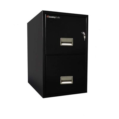 Sentry Safe 2 Drawer Vertical Letter Water Resistant File