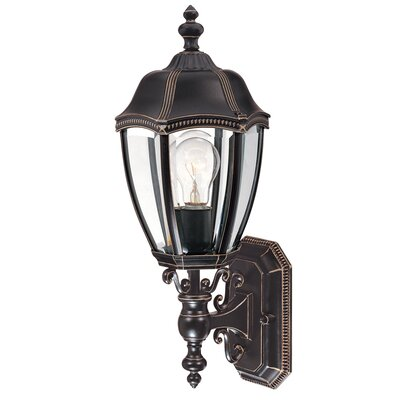 Dolan Designs Roseville 1 Light Outdoor Wall Lantern