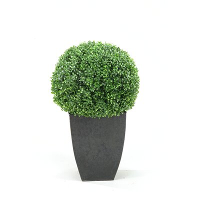 D & W Silks Boxwood Ball Topiary in Square Planter