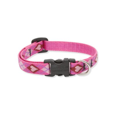 "Lupine Pet Puppy Love 1/2"" Adjustable Small Dog Collar"