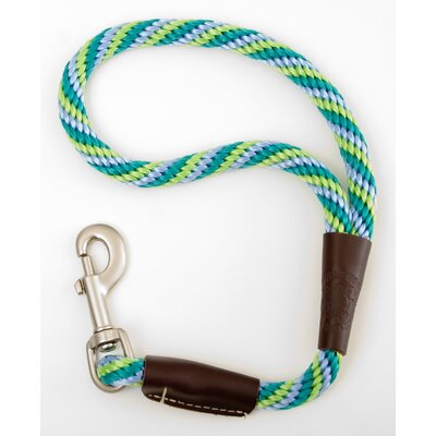 Mendota Twist Traffic Leash in Seafoam