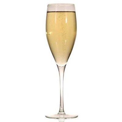 Ravenscroft Crystal Classics 8.13 oz. Champagne Glass (Set of 4)