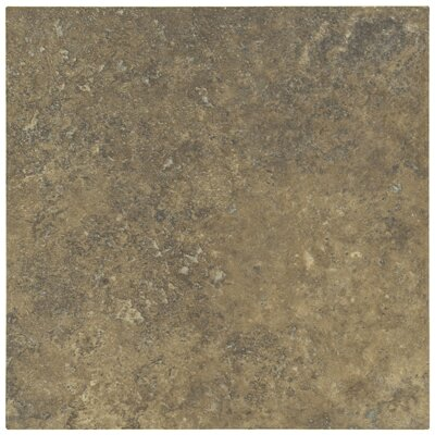 "Shaw Floors Lunar 12"" x 12"" Porcelain Tile in Walnut"