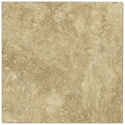 "Shaw Floors Piazza 20"" x 20"" Ceramic Tile in Cream"