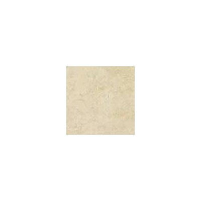 "Shaw Floors Costa D'Avorio 13"" x 13"" Floor Tile in Beige"