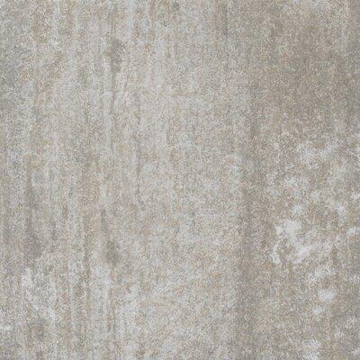 "Shaw Floors Ridgestone 12"" x 12"" Floor Tile in Silver"