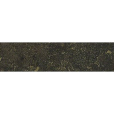 Lunar Bullnose Tile Trim in Graphite