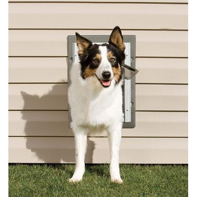 Pet Safe Wall Entry Pet Door