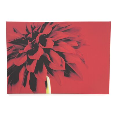 "Graham & Brown Red Dahlia Printed Canvas Art - 30"" X 40"""