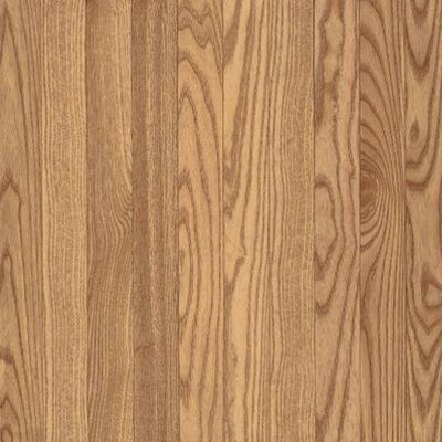 SAMPLE - Yorkshire Plank Solid Red Oak in Natural