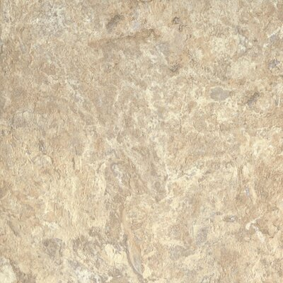 "Armstrong Alterna North Terrace 16"" x 16"" Vinyl Tile in Beige/Taupe"