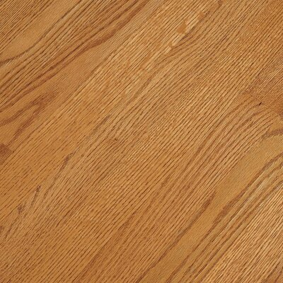 Bruce Flooring SAMPLE - Fulton™ Strip Solid Red Oak in Butterscotch