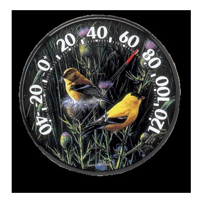Chaney Thermometer Goldfinches II