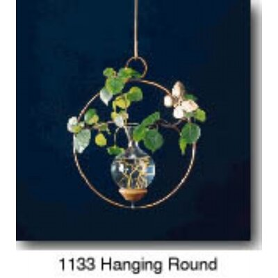 The Brass Butterfly Hanging Round Plant Rooter