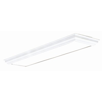Indoor Fluorescent Deco 2 Light Ceiling Lamp