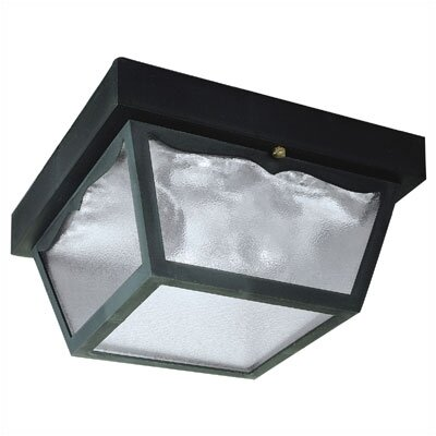 Westinghouse Lighting Exterior Hi-Impact 2 Light Flush Mount