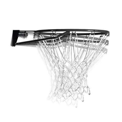 "Lifetime 44"" Backboard / Rim Combo"
