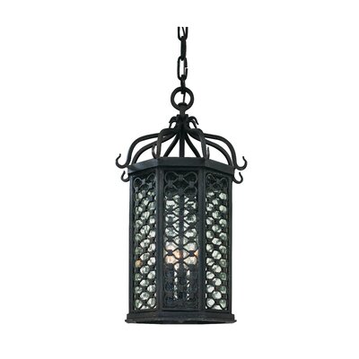 Troy Lighting Los Olivos 1 Light Outdoor Large Hanging Lanterm