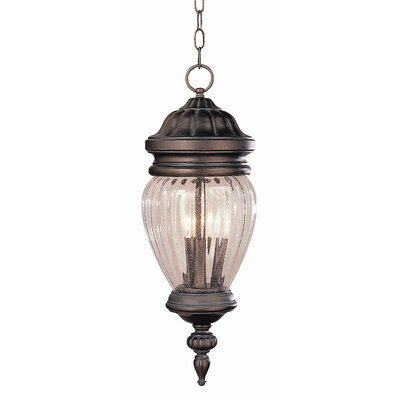 "TransGlobe Lighting Outdoor 21.75""  Hanging Lantern"