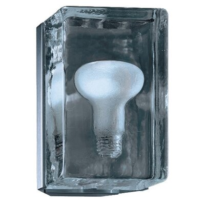 Zaneen Lighting Birne Wall Sconce in Nickel