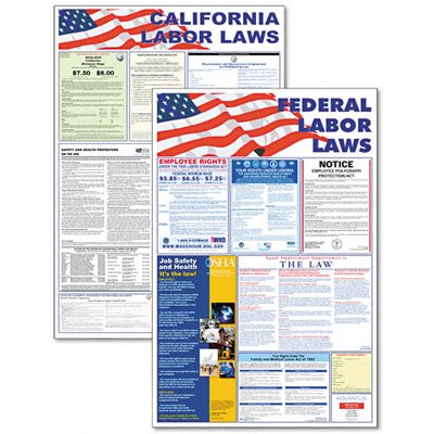 Advantus Corp. State/Federal Labor Law/Legally Required Multi-Colored Poster, 24w x 30h
