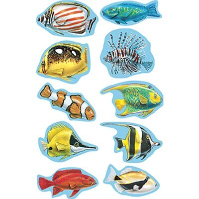 Teacher Created Resources Wy Under The Sea Accent Dazzlers I