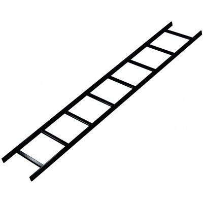 Middle Atlantic CL Series 6' L x 12&quot; W Straight Ladder Section