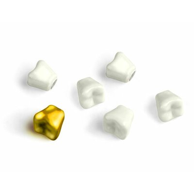 Kikkerland Teeth Magnets (Set of 6)