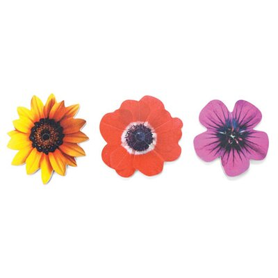 Kikkerland Pick A Petal Emery Boards