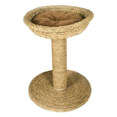 Ware Mfg Seagrass Cat Scratch and Bed