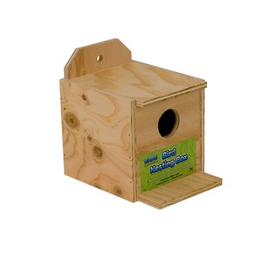 Finch Nest Bird House