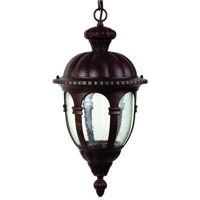 Yosemite Home Decor Merili 2 Light Outdoor Hanging Lantern