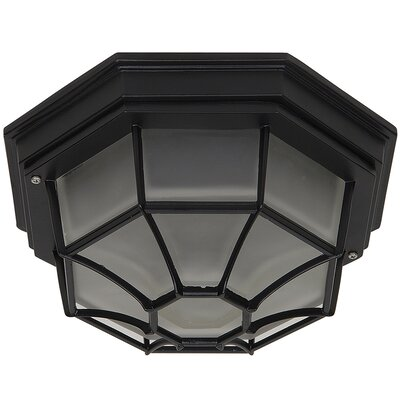Yosemite Home Decor 2 Light Flush Mount