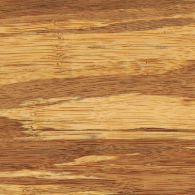 "Teragren Synergy 3-3/4"" Strand Bamboo Flooring in Brindle"