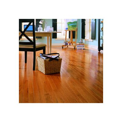 "Anderson Floors Jacks Creek 3-1/4"" Solid Red Oak Flooring in Butterscotch"