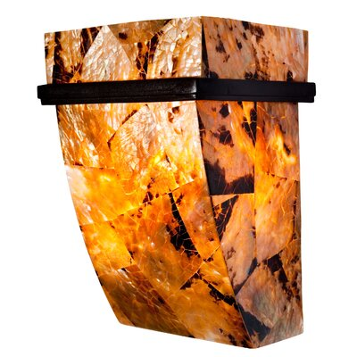 Varaluz Big 1 Light Sustainable Shell Sconce
