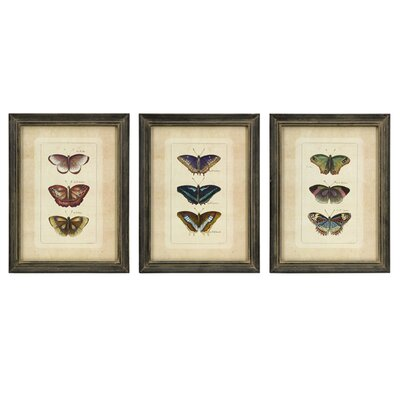 IMAX Butterfly Collection Wall Art (Set of 3)