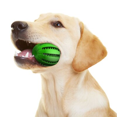 Hugs Pet Products Apple Dog Chew Toy