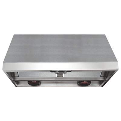 Advantage Professional Range Hood with Warming Light