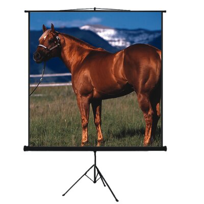 "Mustang 100"" Tripod Screen in Matte White"