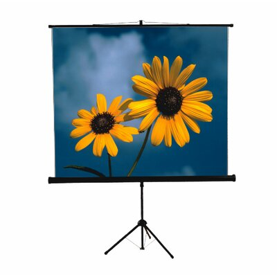 Mustang 84&quot; x 84&quot; Tripod Screen in Matte White