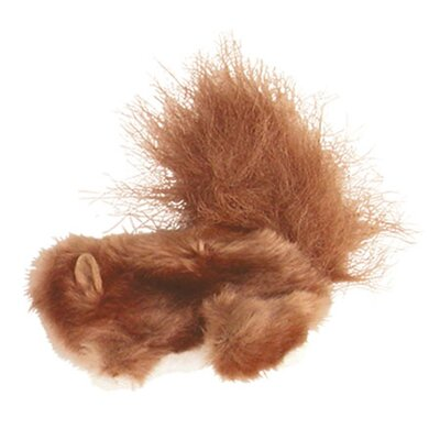 Dr. Noy's Squirrel Plush Cat Toy