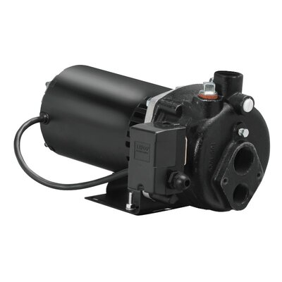 1/2 HP Cast-Iron Convertible Well Jet Pump