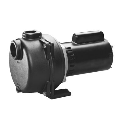 2 HP Cast-Iron Lawn Sprinkling Pump